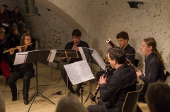 Concert Held to Celebrate 2015 World Wood Day in Switzerland