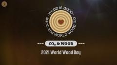 2021 WWD - Carbon Storage